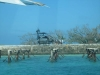 fort_jefferson-1