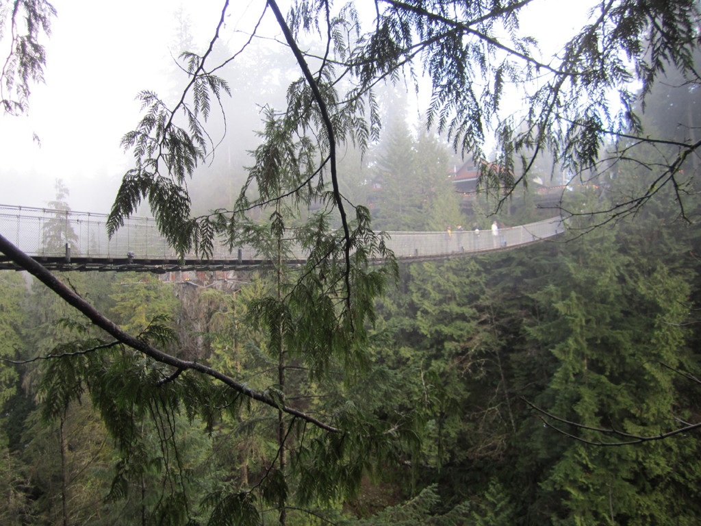 swinging-bridge-vancouver-sm