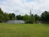 pond-looking-north-from-south-property-line