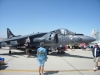 harrier_blacksheep