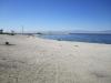 salton_sea_beach