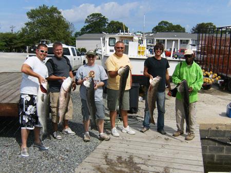 Striper Fishing Success