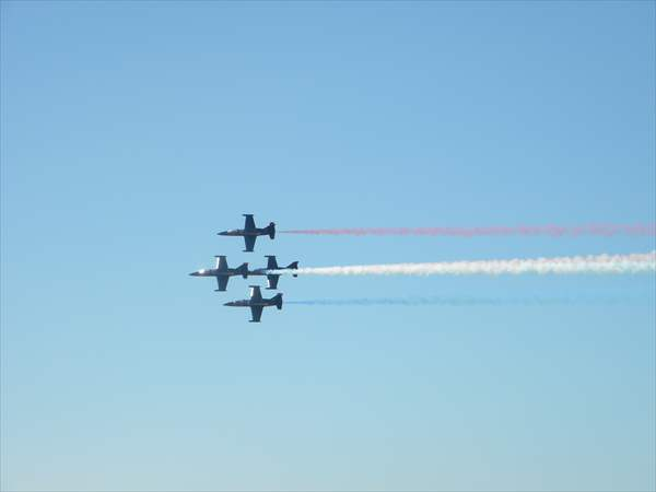 L-39 Formation